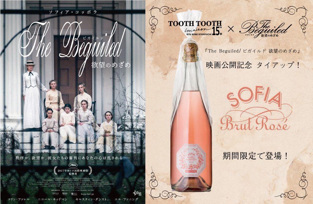 期間中はソフィアコッポラ監督の父「フランシス・フォード・コッポラ」が、娘ソフィアのために作ったワイン「ソフィア」を特別販売。
